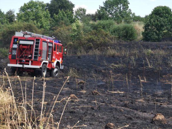Płoną budynki i nieużytki. Trwa walka strażaków w Chełmku – ZDJĘCIA!