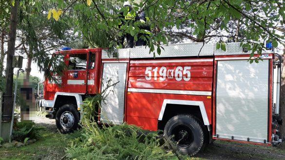 Pracowity poranek strażaków OSP i JRG – ZDJĘCIA!