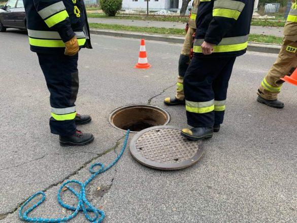 Strażacy z OSP Oświęcim uratowali małego kotka, który utknął w studzience kanalizacyjnej – ZDJĘCIA!